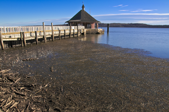 Mount Vernon Dock HDR #1