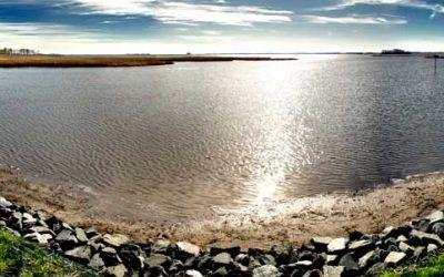 Backwater Wildlife Refuge Park