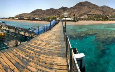 Eilat's Coral Reef