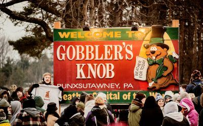 Gobbler's Know Groundhog Day 2013