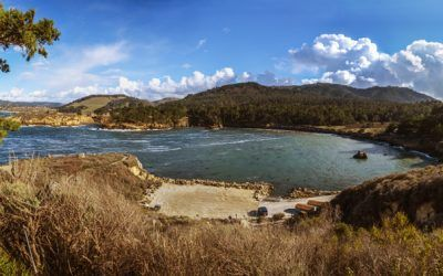 Whaler's Cove Pano